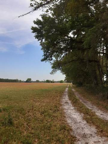 00 42nd Pl NW, Chiefland, FL 32626 (MLS #782422) :: Bridge City Real Estate Co.