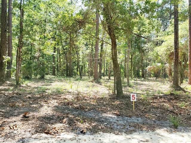 303 First St, Steinhatchee, FL 32359 (MLS #782428) :: Compass Realty of North Florida