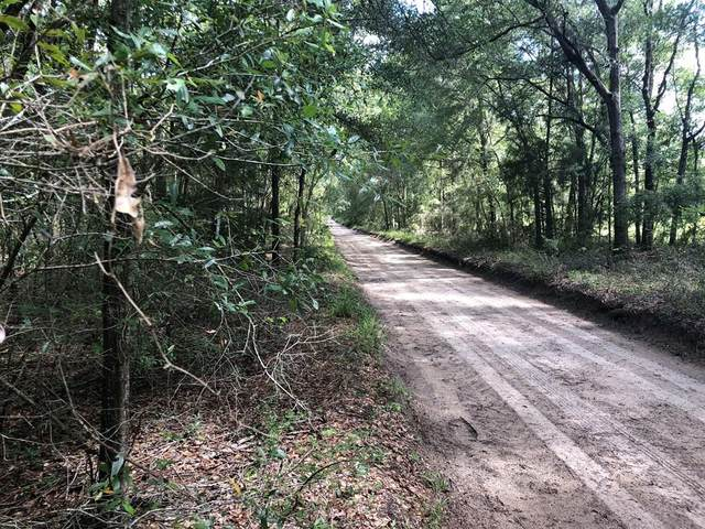 L12&14 72nd Ct NW, Bell, FL 32619 (MLS #782488) :: Hatcher Realty Services Inc.