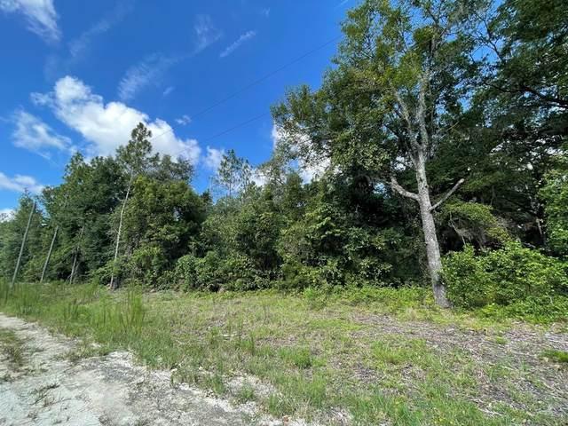 91st Ct NE, Archer, FL 32621 (MLS #782505) :: Pristine Properties