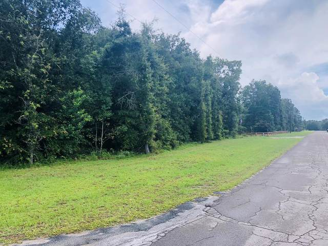 56th Ave NE, High Springs, FL 32643 (MLS #782509) :: Hatcher Realty Services Inc.