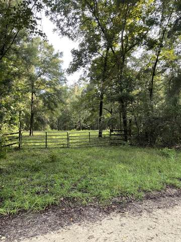 Lot 9 120th St NW, Chiefland, FL 32626 (MLS #782536) :: Compass Realty of North Florida