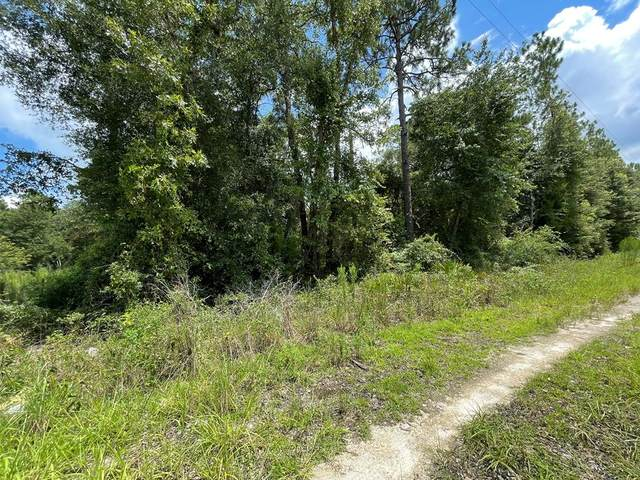 821st St NE, Old Town, FL 32680 (MLS #782556) :: Compass Realty of North Florida