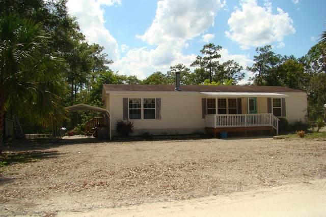 1411 NE Cedar St #1, Steinhatchee, FL 32359 (MLS #782616) :: Bridge City Real Estate Co.