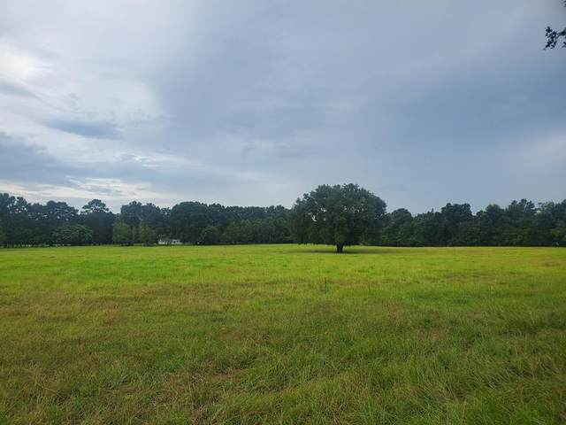 7619 County Road 344 SW, Bell, FL 32619 (MLS #782618) :: Hatcher Realty Services Inc.