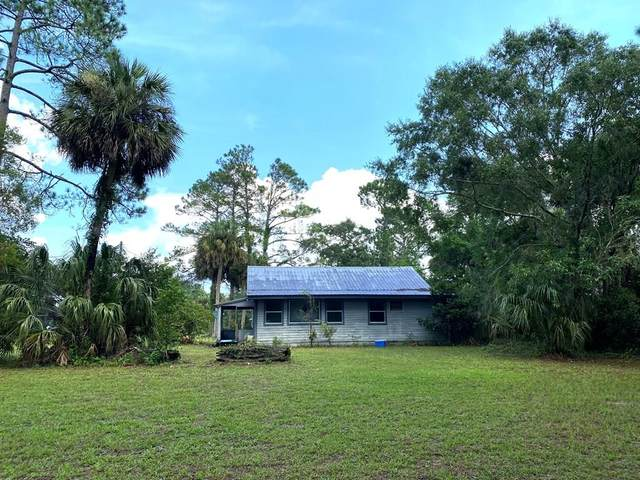 13323 SW Hwy 351, Horseshoe Beach, FL 32648 (MLS #782626) :: Compass Realty of North Florida