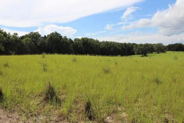 0000 46th Way SE, Trenton, FL 32693 (MLS #782810) :: Compass Realty of North Florida