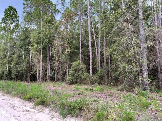 30th Ave NW, Bell, FL 32619 (MLS #782830) :: Hatcher Realty Services Inc.
