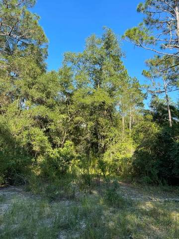 County Road 317 SE, Old Town, FL 32680 (MLS #782849) :: Compass Realty of North Florida