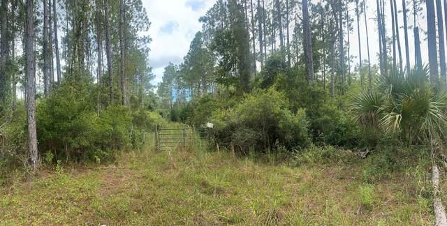 Unassigned, Steinhatchee, FL 32359 (MLS #782853) :: Compass Realty of North Florida