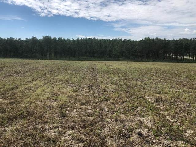LOT 5 72nd Pl NW, Bell, FL 32619 (MLS #782891) :: Compass Realty of North Florida