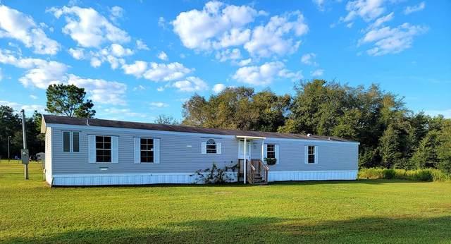 11330 NE 83rd Ter, Bronson, FL 32621 (MLS #782925) :: Compass Realty of North Florida