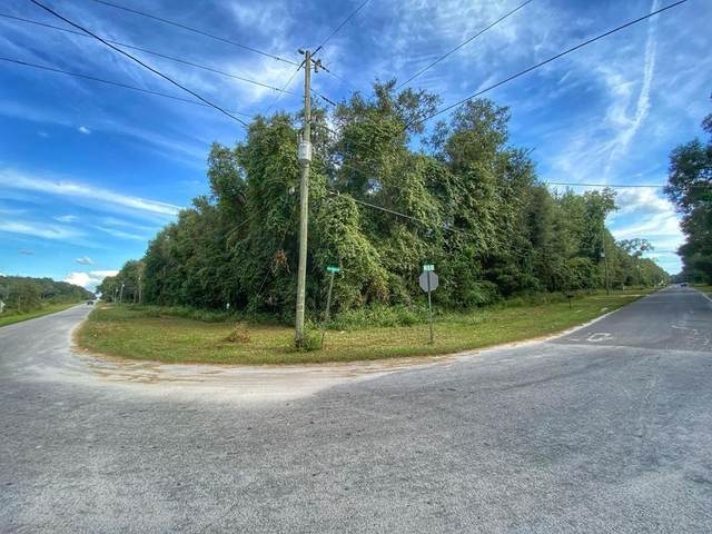 Lot 54 80th Ave NW, Trenton, FL 32693 (MLS #782949) :: Compass Realty of North Florida
