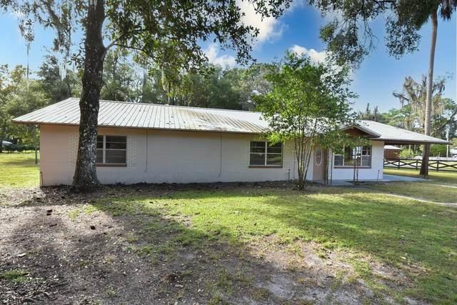 142 SE 275th St, Cross City, FL 32628 (MLS #782957) :: Hatcher Realty Services Inc.