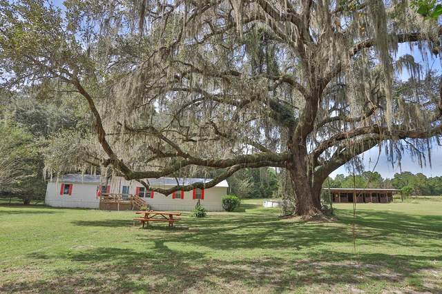 27717 W Newberry Rd, Newberry, FL 32669 (MLS #782981) :: Compass Realty of North Florida
