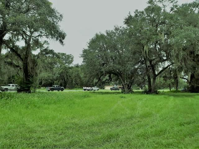 17551 Us Hwy 19 NW, Fanning Springs, FL 32693 (MLS #782988) :: Pristine Properties