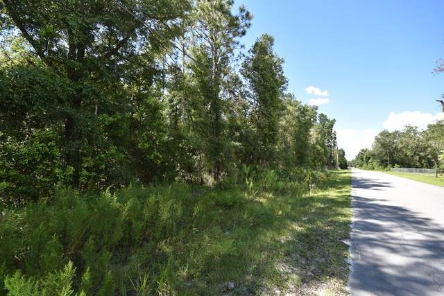 790th St NE, Old Town, FL 32680 (MLS #783023) :: Compass Realty of North Florida
