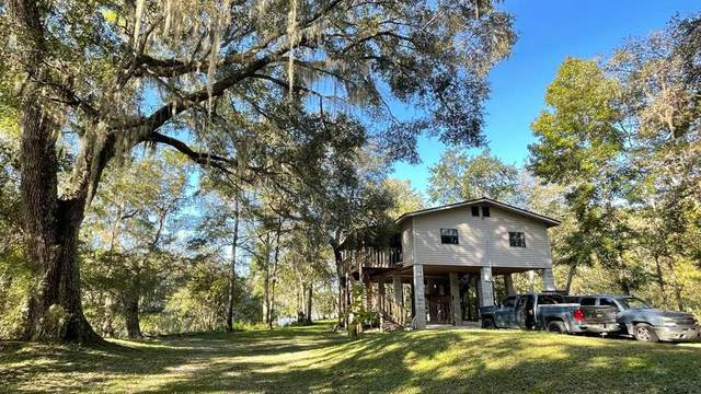 118 SE 995th St, Old Town, FL 32680 (MLS #783039) :: Compass Realty of North Florida