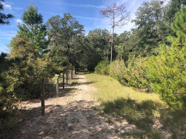 Tract 11 73rd Ter SW, Bell, FL 32619 (MLS #783044) :: Compass Realty of North Florida