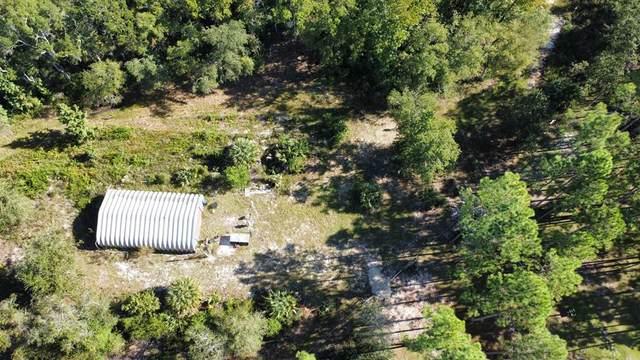 456 693rd St SW, Steinhatchee, FL 32359 (MLS #783063) :: Bridge City Real Estate Co.