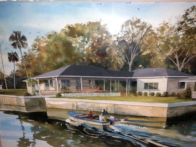 45 SE 222nd Street, Suwannee, FL 32692 (MLS #772201) :: Pristine Properties