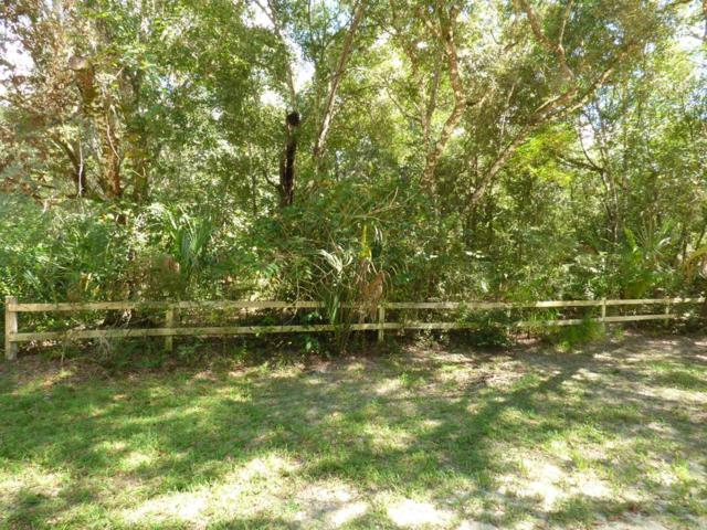 Lot 8 130 Ave NW, Chiefland, FL 32626 (MLS #776534) :: Pristine Properties