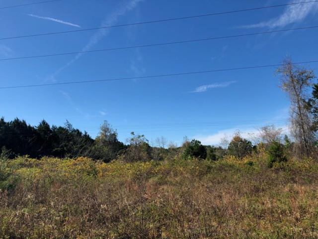 15 Ct SW, Trenton, FL 32693 (MLS #776863) :: Pristine Properties