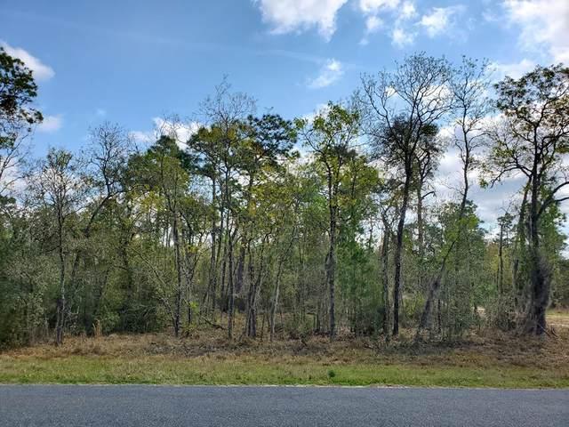 L10 & 11 137th Ter NE, Williston, FL 32696 (MLS #779758) :: Compass Realty of North Florida
