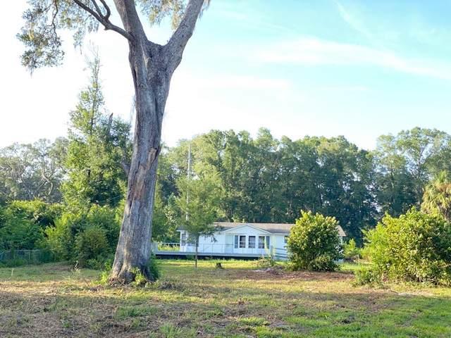 115 NE 112 Ave, Old Town, FL 32680 (MLS #779802) :: Bridge City Real Estate Co.