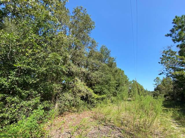 Lot 6-7 96 Ave NE, Bronson, FL 32621 (MLS #780486) :: Better Homes & Gardens Real Estate Thomas Group