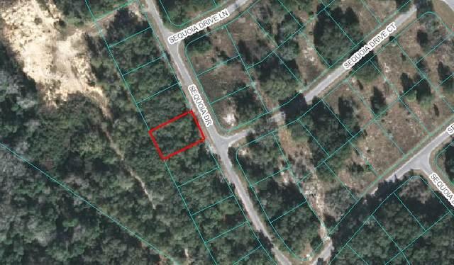 Lot 20 Sequoia Loop Drive, Ocklawaha, FL 32179 (MLS #780557) :: Better Homes & Gardens Real Estate Thomas Group