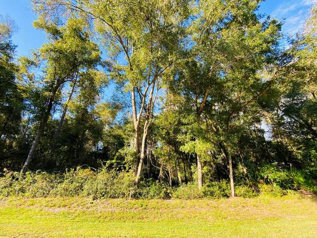 Lot 59 73rd Street NW, Chiefland, FL 32626 (MLS #780684) :: Hatcher Realty Services Inc.