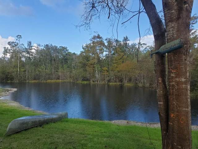 1161 715 SW, Steinhatchee, FL 32359 (MLS #780903) :: Better Homes & Gardens Real Estate Thomas Group