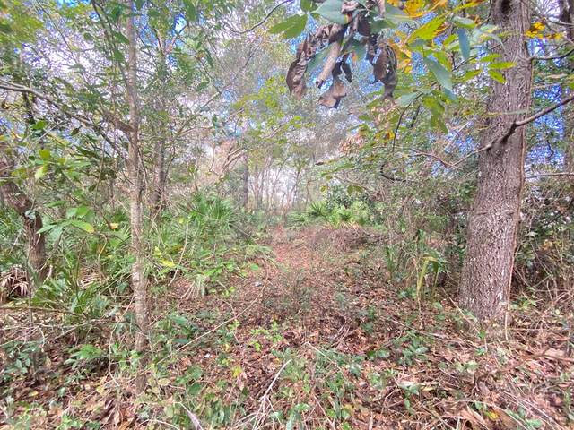 Lot 6 110th Circle NW, Chiefland, FL 32626 (MLS #780996) :: Hatcher Realty Services Inc.
