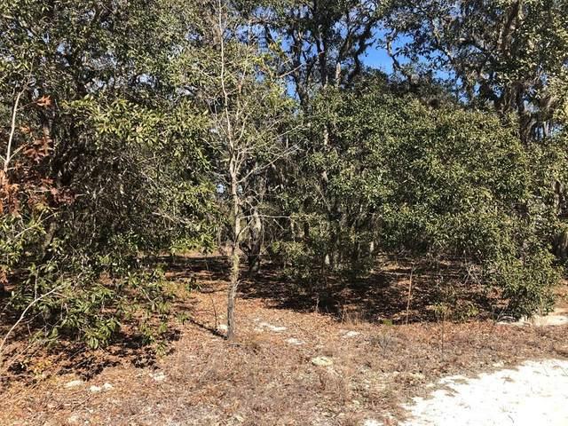 Lot 29 69 St NE, Williston, FL 32696 (MLS #781360) :: Hatcher Realty Services Inc.