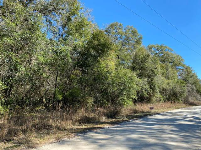 TBD 290th Ave NE, Old Town, FL 32680 (MLS #781442) :: Hatcher Realty Services Inc.