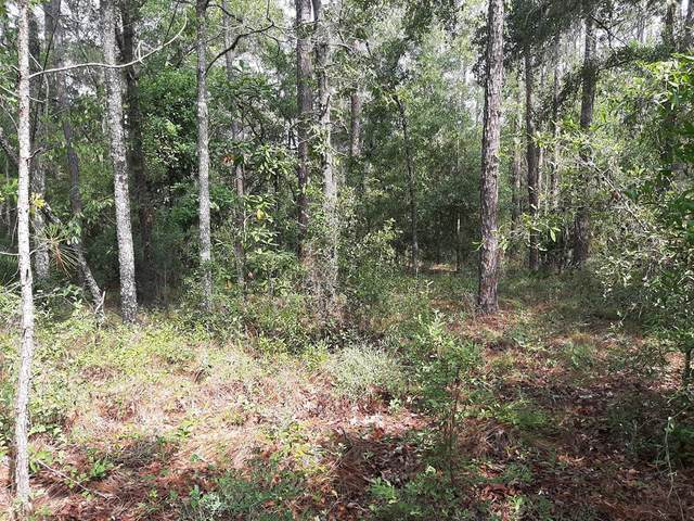 TBD 30th Ave NW, Bell, FL 32619 (MLS #782227) :: Bridge City Real Estate Co.