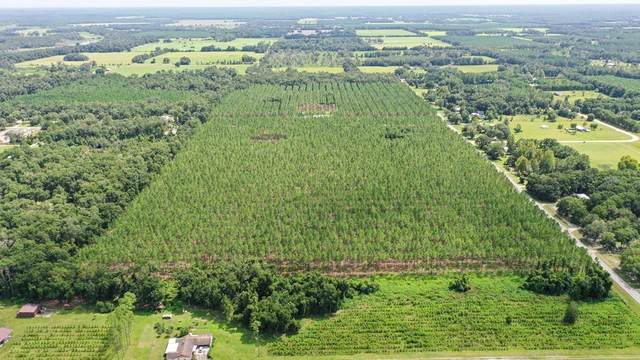 LOT 4 55th Ave NW, Chiefland, FL 32626 (MLS #782694) :: Hatcher Realty Services Inc.
