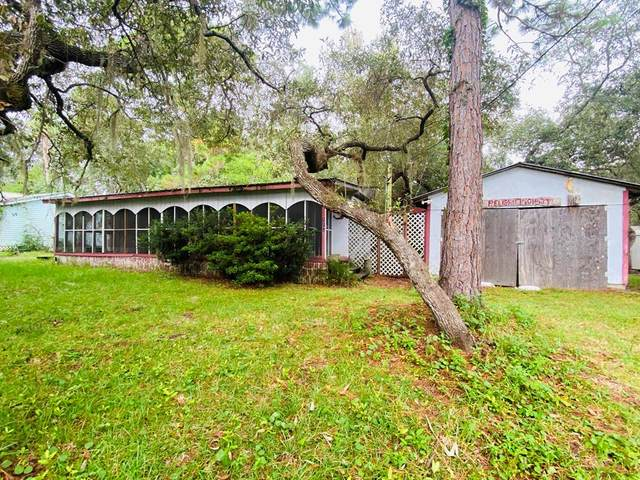 113 White Ln, Steinhatchee, FL 32359 (MLS #782773) :: Compass Realty of North Florida