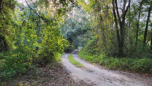 00 21st Ter SE, Trenton, FL 32693 (MLS #782895) :: Compass Realty of North Florida