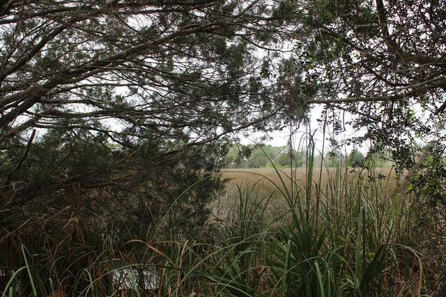 Lot 23 155 CT SW, Cedar Key, FL 32625 (MLS #777724) :: Hatcher Realty Services Inc.