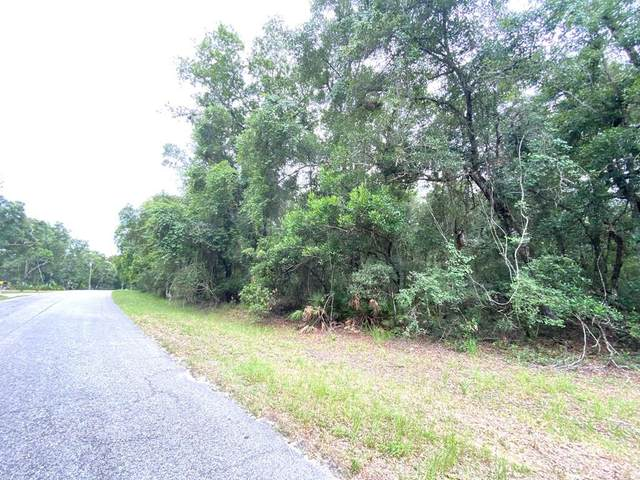 Lot 5 117 Ave NW, Chiefland, FL 32626 (MLS #780215) :: Better Homes & Gardens Real Estate Thomas Group