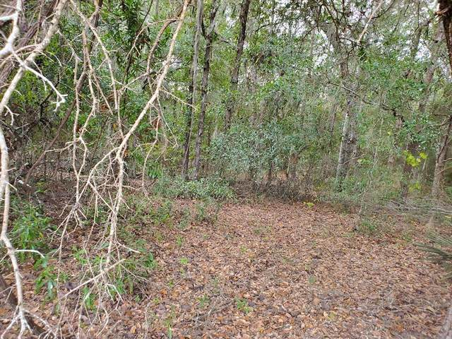Lot 13 20th Ave NW, Bell, FL 32619 (MLS #780803) :: Compass Realty of North Florida