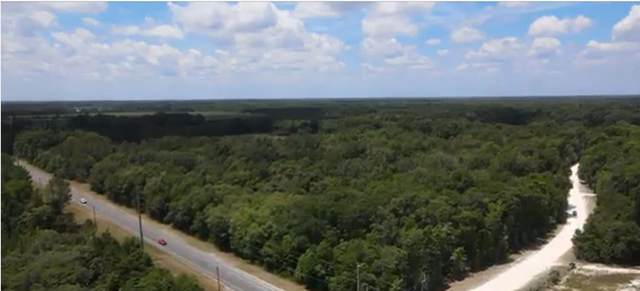 Hwy 349, Old Town, FL 32680 (MLS #781290) :: Compass Realty of North Florida