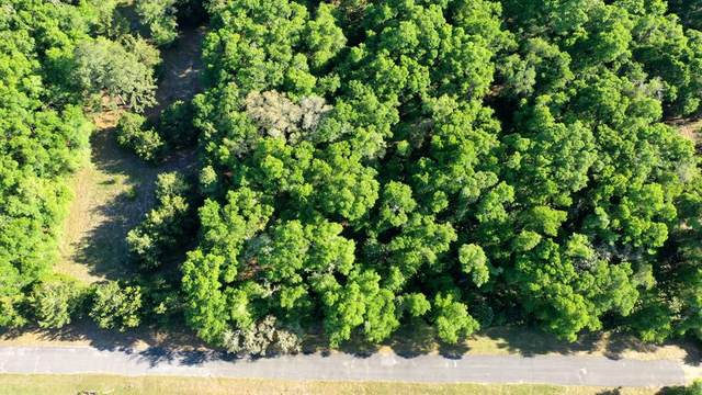 LOT 99 45th Ter NW, Chiefland, FL 32628 (MLS #781903) :: Compass Realty of North Florida