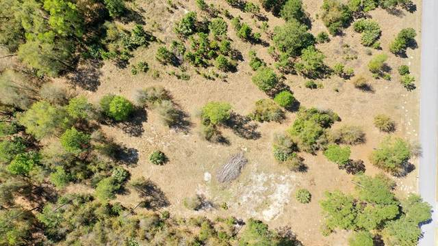 LOT 42 73rd St NW, Chiefland, FL 32626 (MLS #781917) :: Compass Realty of North Florida