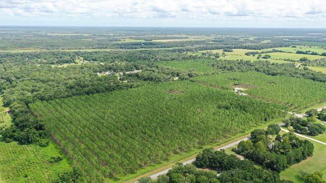 LOT 5 73rd St NW, Chiefland, FL 32626 (MLS #782695) :: Hatcher Realty Services Inc.