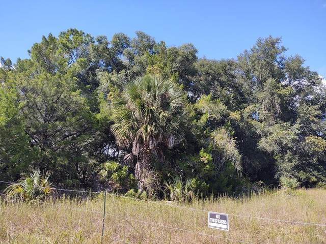 495 102nd Ave NE, Cross City, FL 32628 (MLS #782979) :: Compass Realty of North Florida