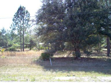 Lot 99 County Road 349 - Photo 1