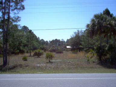 349 Hwy 349th St - Photo 1